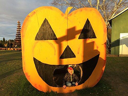 Home Comforts Acrylic Face Mounted Prints Pumpkin Decoration Jack O Lantern Halloween Print 18 x 24. Worry Free Wall Installation - Shadow Mount is -