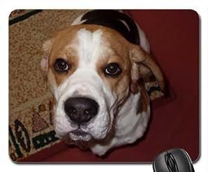 berite beagle basset Cute Cool Decorative Design Animal Dog Mousepad
