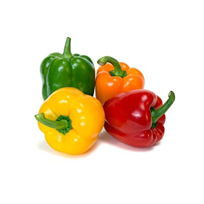 Seeds Sweet Pepper Rainbow Bell Red Mix Organic Heirloom Ukraine : Garden & Outdoor