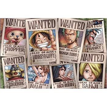 Amazon.com: One Piece Straw Hat Crew Wanted Poster Puzzle ...