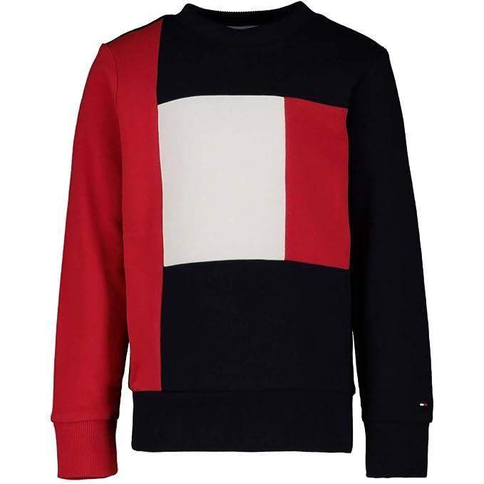 30b6c3405 Tommy Hilfiger Boy's Colorblock Sweatshirt, Red (Lychee 618), 48 (Size: