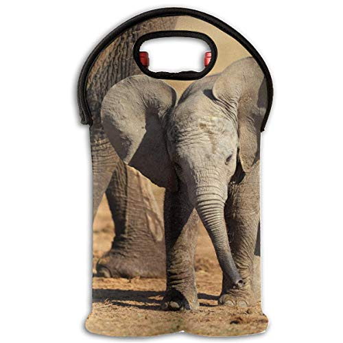 African Animals in Safari 2 Bottle Wine Tote Carrier Bag Portable Insulated Polyester Beer Hand Bag for Travel,Picnic,Party