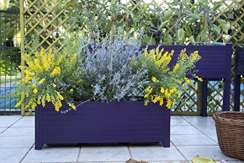 Jardinera GREENLAND 88x31, 5x31, 5 cm. Color:Berenjena: Amazon.es ...