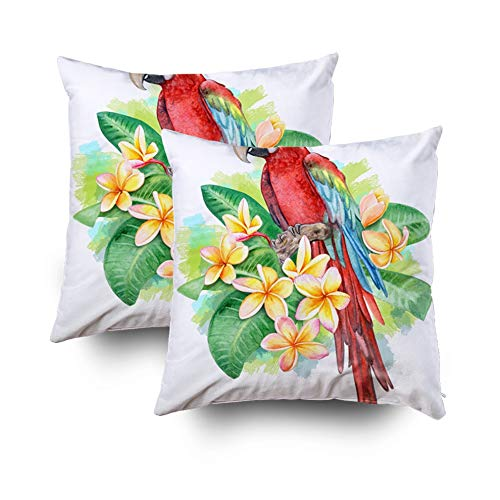 (HerysTa Easter Home Decorative Body Pillow Cover Pack of 2 18X18inch Invisible Zipper Cushion Cases Winged Macaw Parrot Birds Sitting in Frangipani Plumeria Flowers Isolated Square Sofa Bed Décor)