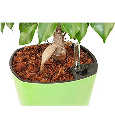 Fiber Mulch (5 Quarts) Organic Potting Mulch + Hydrating Bag = Attractive Plants. Cover House and Patio Potting Soil. Stop Soil Splash and Mold, Keep Weeds down | Easy-to-Store | Looks Great.