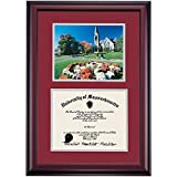 Massachusetts Amherst UMass Minutemen Diploma Frame Maroon Gray Matting Photograph