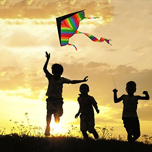 RuiyiF Kites for Boys Girls Kids Child Children Colorful (Pack of 3) by RuiyiF (Image #4)