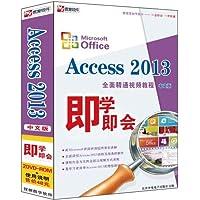 Access 2013全面精通视频教程(中文版)(2DVD-ROM)