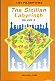 img - for The Sicilian Labyrinth, Vol. 2 (Pergamon Russian Chess Series) book / textbook / text book