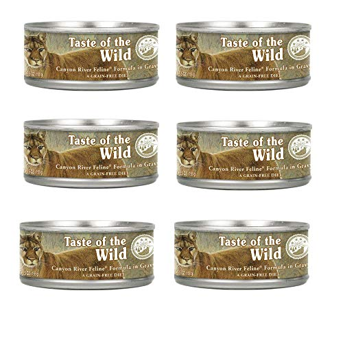 Taste of the Wild Grain Free High Protein Cat Food Canyon Ri