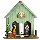 German Black Forest weather house green TU 893 gruen