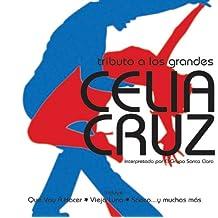 Tributo a Los Grandes: Celia Cruz