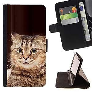 Momo Phone Case / Flip Funda de Cuero Case Cover - Jugar el gato Bobtail americano Manx Marrón; - Samsung Galaxy S3 III I9300
