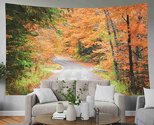 Anucky Tapestry Wall Hanging, Tapestries Polyester Fabric for Home Decoration, Autumn Drive in Rural New Dorm Décor and Bedroom 60x50 inch Huge Tapestry