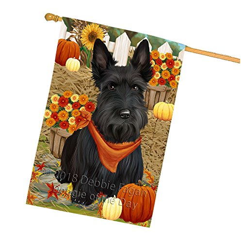 Fall Autumn Greeting Scottish Terrier Dog with Pumpkins House Flag FLG50871