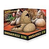 Exo Terra Fósil de Adorno con Forma de Huevos de Dinosaurio