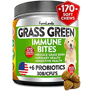 FurroLandia Natural Grass Saver for Dogs - 170 Soft Chews - Dog Pee Lawn Repair Caused by Dog Urine - Grass Saver Rocks - Apple Cider Vinegar - DL-Methionine + Probiotics + Digestive Enzymes - USA