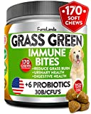 Natural Grass Saver for Dogs - 170 Soft Chews - Dog Pee Lawn Repair Caused by Dog Urine - Grass Saver Rocks - Apple Cider Vinegar - DL-Methionine - with Probiotics + Digestive Enzymes - Made in USA