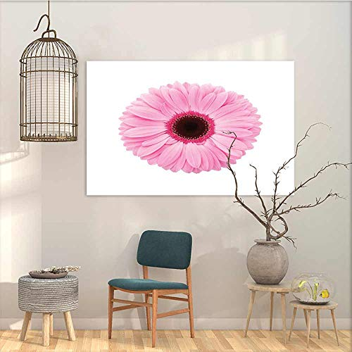 Oncegod Canvas Print Artwork Sticker Pink and White Fresh Gerber Daisy Garden Plants of Spring Growth Single Flower Image Easy Care Oil Painting Pale Pink White W35 xL31