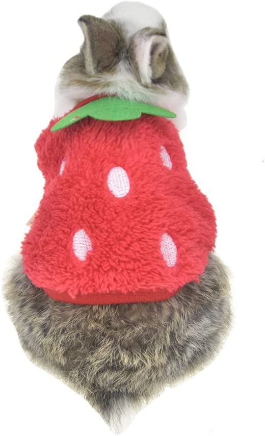 FLAdorepet Winter Warm Bunny Rabbit Clothes Small Animal Chinchilla Ferret Costume Outfits Bust 10.2 2XS , Red