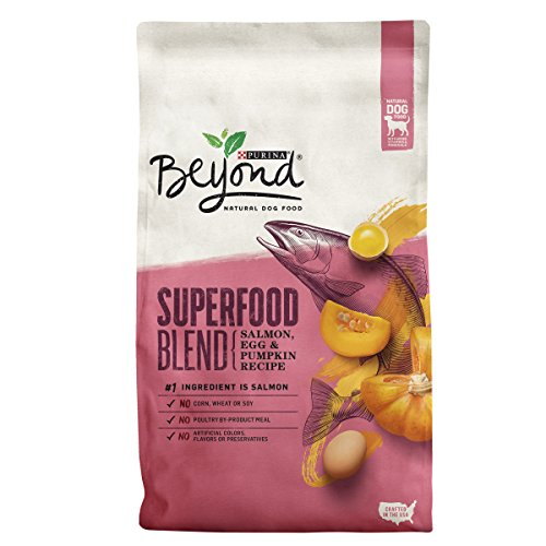 Purina Beyond Superfood Blend Salmon, Egg & Pumpkin Recipe Adult Dry Dog Food - 7 lb. Bag