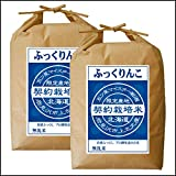 ふっくりんこ 無洗米 10kg (5kg×2袋) 五つ星お米マイスター契約栽培米 平成30年度産 北海道産