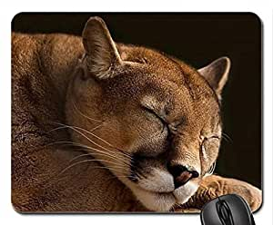 Cougar nap Mouse Pad, Mousepad (Cats Mouse Pad)