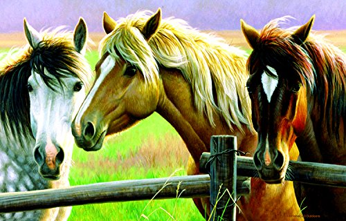 Horse Fence 1000 Piece Jigsaw Puzzle by SunsOut