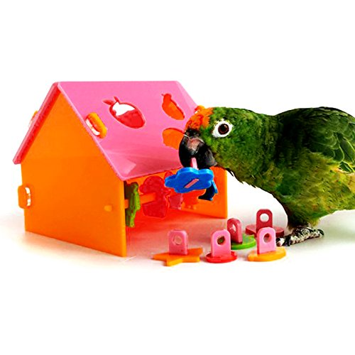 Alfie Pet by Petoga Couture - Carbry Educational Color and Shape Training Toy for Birds - Color: Pink, Size: Large
