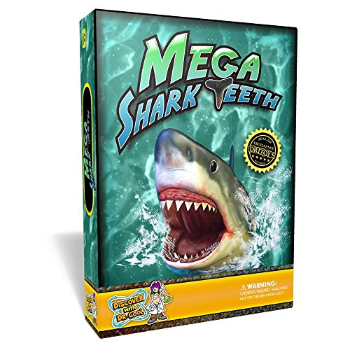 Discover with Dr. Cool Mega Shark Teeth Fossil Science Kit - Includes 5 Genuine fossilized Shark Teeth and a Large Replica Megalodon Tooth (Replica Shark Teeth)