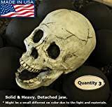 Myard DELUXE Log – Imitated Human Skull Fire Gas Log for Natural Gas/Liquid Propane/Wood Fire Fireplace & Fire Pit Halloween (Qty 3, White)