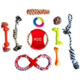 Dog Toys Set – Pack Of 10 Interactive Puppy Chew Toys For Playtime, Teething, Exercise, Training