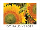 Sunshine. Unique 18x24 Sunflowers Fine Art Photography Poster - Best Reviews Guide