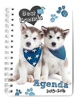 Agenda escolar semana vista 2015/2016 Myrna Perros: Amazon ...