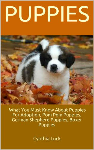 Puppies: What You Must Know About Puppies For Adoption, Pom Pom Puppies, German Shepherd Puppies, Boxer Puppies -