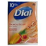 Dial Tropical Escape Antibacterial Deodorant Bar Soap, 4 oz, 10...