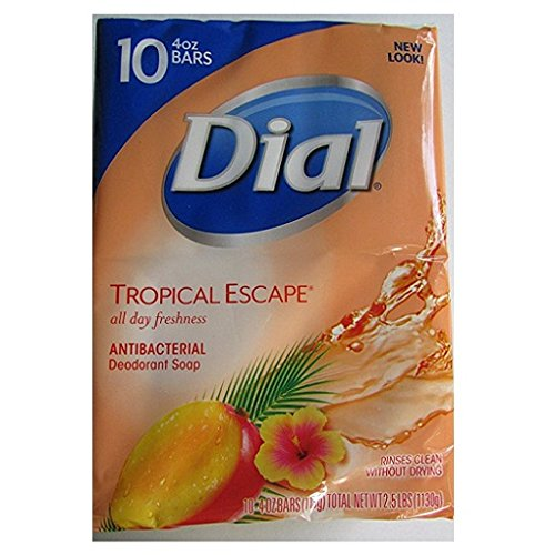 dial-tropical-escape-antibacterial-deodorant-bar-soap-4-oz-10-count