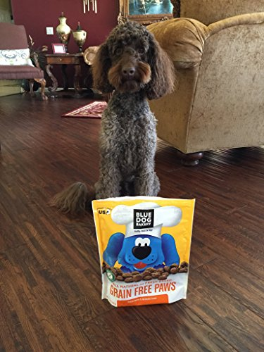 Blue Dog Bakery Grain-Free Dog Biscuits | All-Natural | Peanut Butter & Molasses | 16oz (Pack of 6) by Blue Dog Bakery (Image #3)