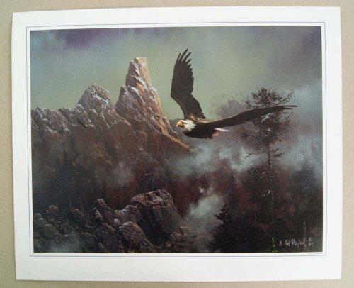 Vintage 1987 Ted Blaylock Bald Eagle Print Ted Blaylock Eagle
