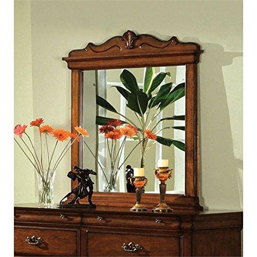 Furniture of America Wade Antique Inspired Mirror in Dark (Dark Oak Mirror)