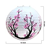 Smeiker Chinese Japanese Pink Cherry Flowers
