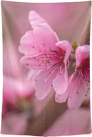 Cocina Arte Decoración pared Jardín Rosa Primavera Flor durazno en árbol Rama Pared Tapiz Colgante pared Cool Post Print Para dormitorio Hogar Sala estar Dormitorio 80 X60 pulgadas Arte pared Cocina: Amazon.es: