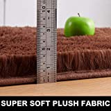 PAGISOFE Brown Fluffy Shag Area Rugs for Bedroom