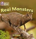 Real Monsters: Band 03/Yellow (Collins Big Cat Phonics): Yellow/Band 3