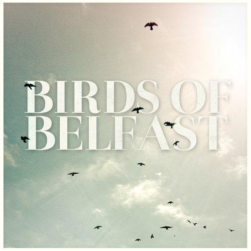 Birds of Belfast