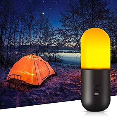 Delicacy Camping Light, Portable Multi-Purpose LED Night Light for Indoor and Outdoor (USB Powered)