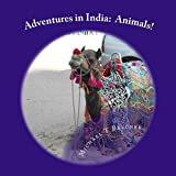 Adventures in India: Animals