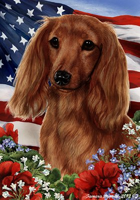 dachshund-longhaired-red-best-of-breed-patriotic-garden-flags