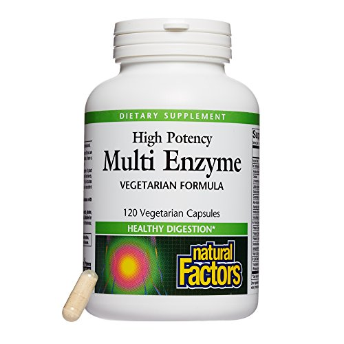 - Natural Factors - High Potency Multi Enzyme, Promotes Healthy Digestion, 120 Vegetarian Capsules
