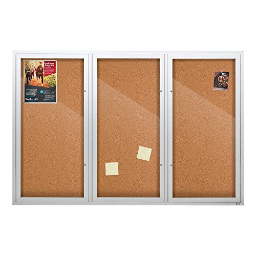 Enclosed Bulletin Board Case (Outdoor/Indoor Enclosed Cork, Bulletin Board with Three Doors, 6' W x 3' H)